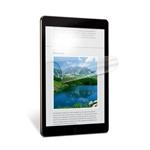 Natural View Anti Glare Apple iPad Air