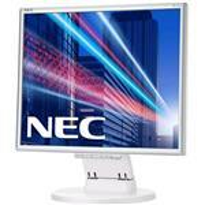 Desktop Monitor - Multisync E171m - 17in - 1280x1024 (sxga) - White